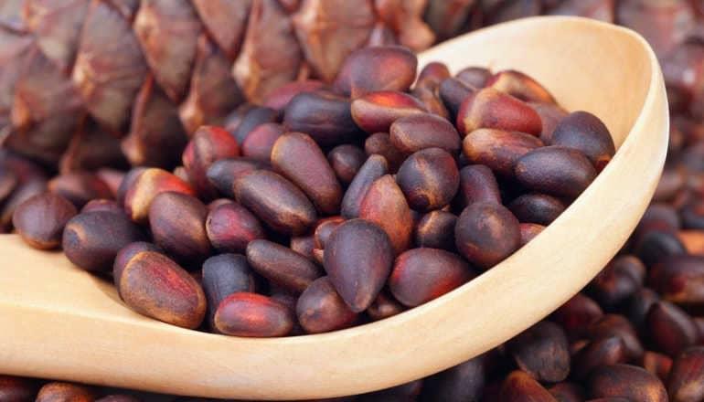 Вред кедровых орехов