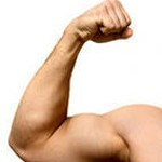 Нагрузки для мышц