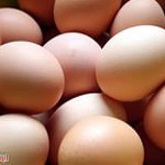 Как проверить свежесть яиц в домашних условиях?