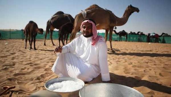 Верблюжье молоко - Мое Здоровье