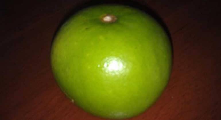 Что такое фрукт свити