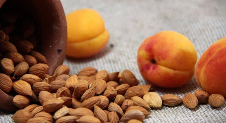 Чем полезны косточки абрикосов