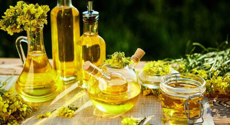 Полезные свойства рапсового масла