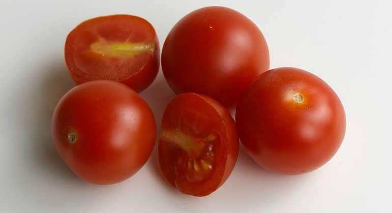 Вред помидоров